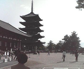 :興福寺五重塔(向かって左手に国宝館がある)